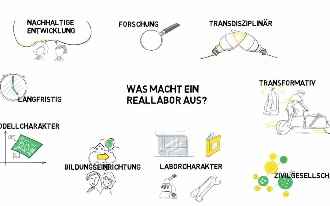 Netzwerk Reallabore gegründet