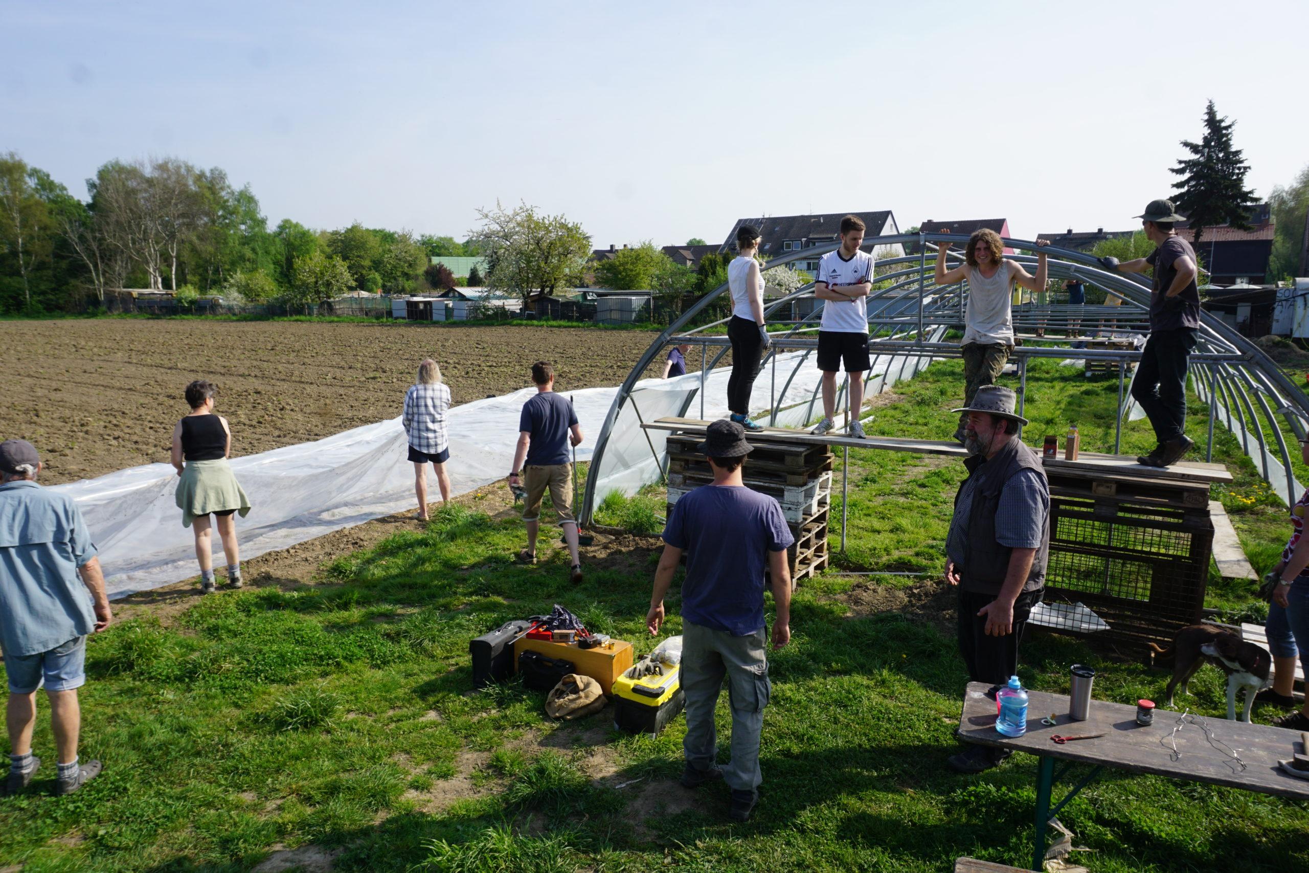 Menschen helfen beim Abdecken der Felder