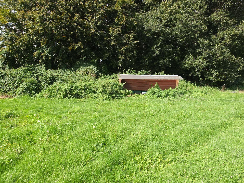 Bienenweide und Bienenbeute in der Werkhof-Gärtnerei