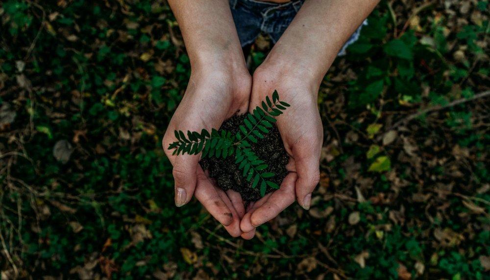 Begleitprogramm in Witten: Nachhaltigkeit erleben